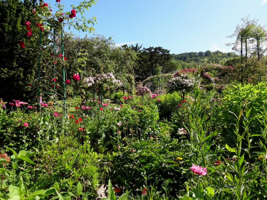 19 Giverny Jardins Claude Monet 993